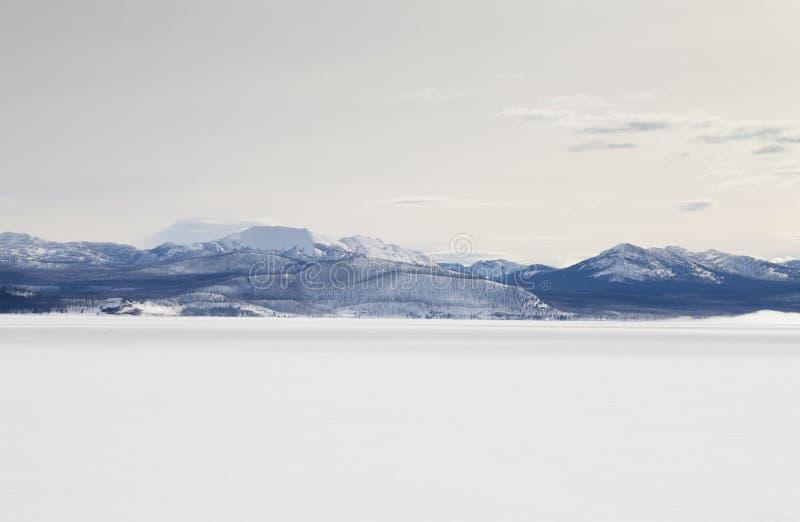 De winter, Meer Yellowstone stock foto