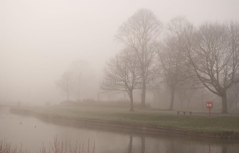 De winter mistige dag in het park in Droitwich Spa royalty-vrije stock foto's