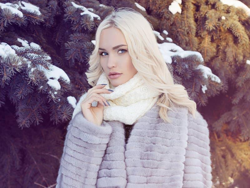 De winter mooie jonge Vrouw in Bontjas stock foto