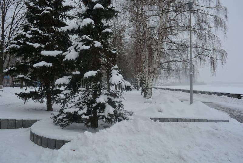 De winter mooie promenade met berken, bomen en witte sneeuw Dijk langs de Dnieper-Rivier in de stad van Dnipro royalty-vrije stock afbeelding