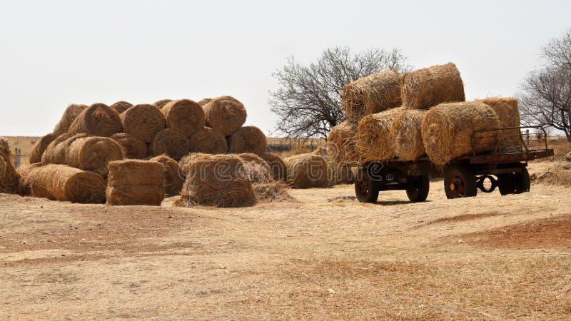 De winter op het landbouwbedrijf in het Noordwesten, Zuid-Afrika royalty-vrije stock afbeelding