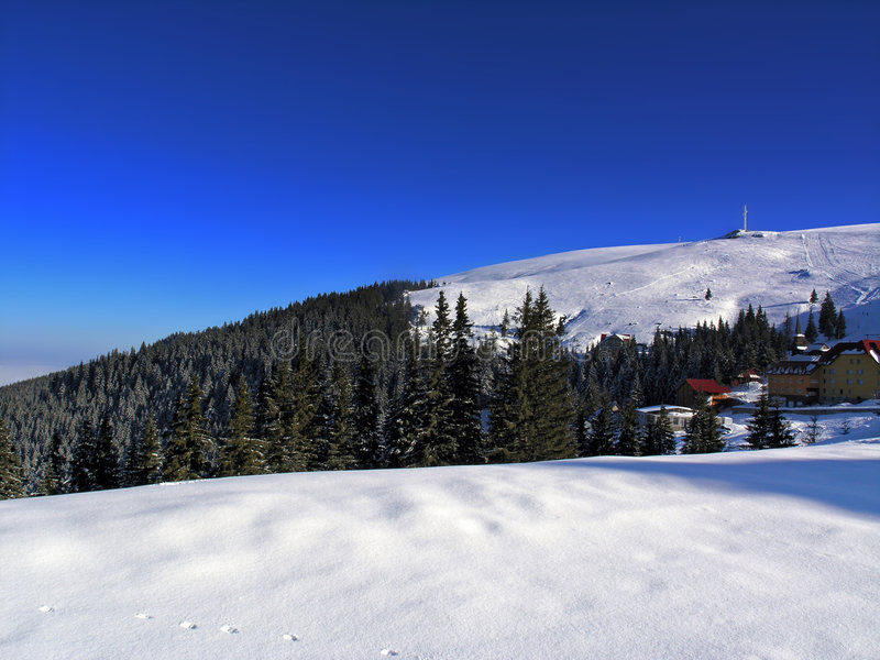 de winter panorama royalty-vrije stock foto's