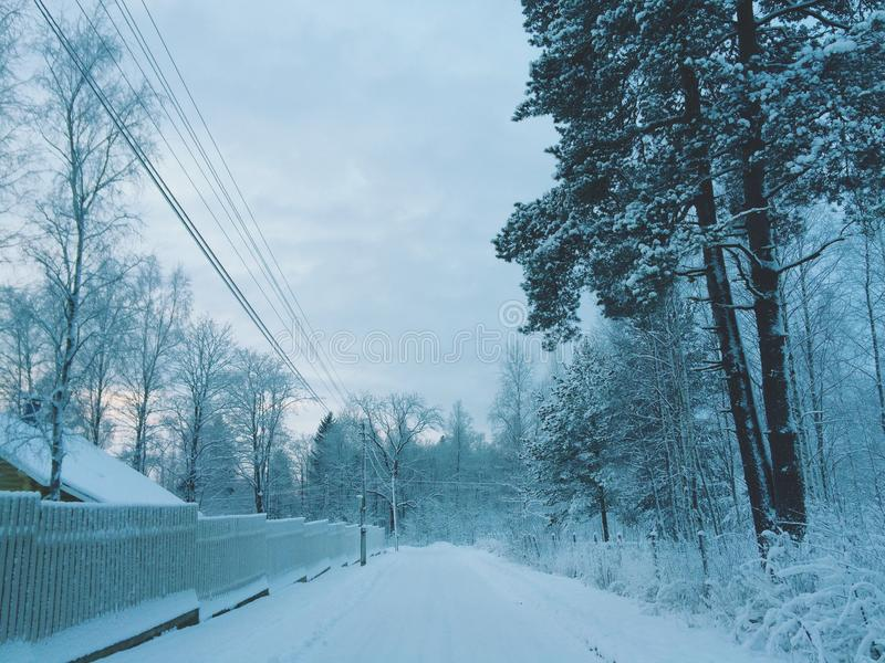 De winter in platteland royalty-vrije stock foto's