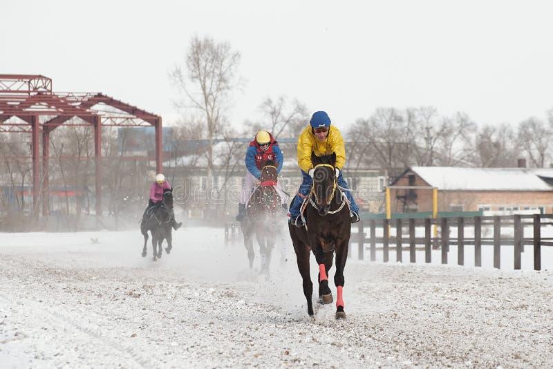 De winter Rassen op de renbaan royalty-vrije stock afbeeldingen