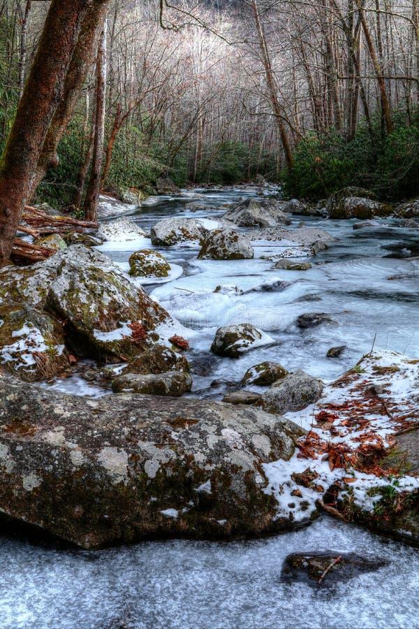 De winter` s Bevroren Landschap stock foto
