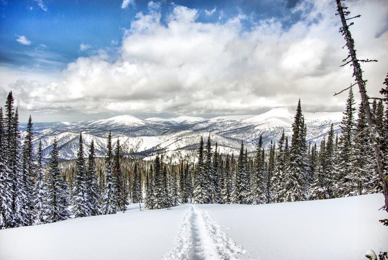De winter Shoria stock afbeelding