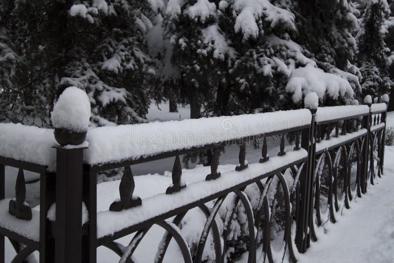De winter, sneeuw op de omheinings fnd boom stock foto