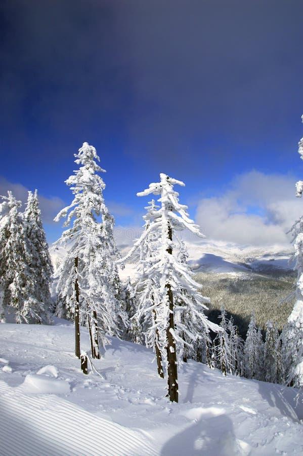De winter in Spindlerov Mlyn stock afbeeldingen