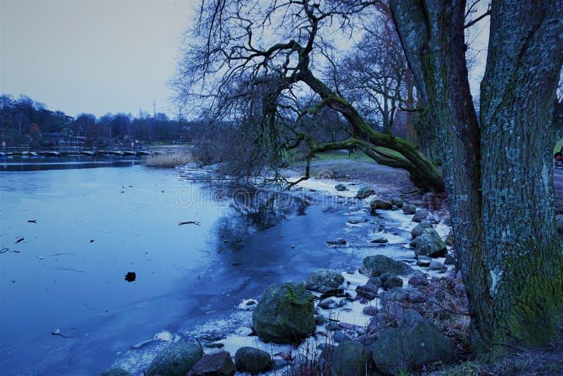 De winter in Stockholm stock afbeeldingen