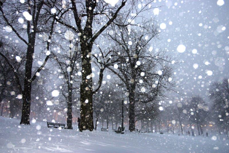 De Winter van Boston royalty-vrije stock foto