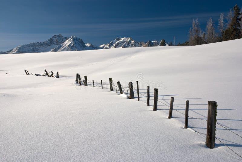 De winter van de Bergen van Idaho stock foto's