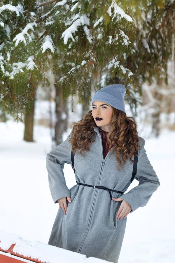 De winter van het Hipstermeisje De jeugdmanier stock afbeelding