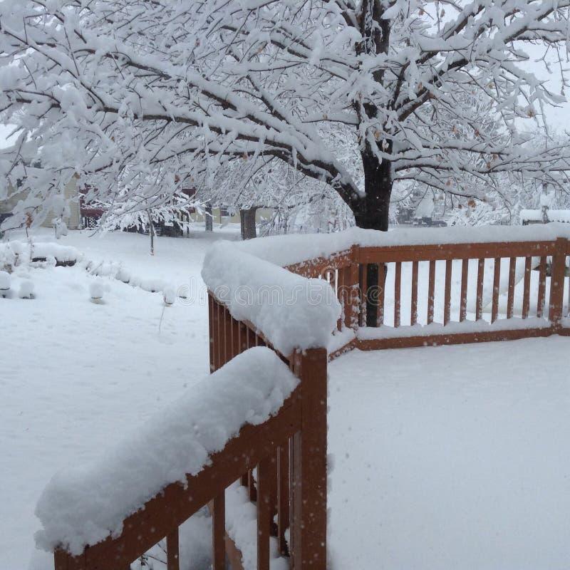 De winter van Iowa royalty-vrije stock afbeelding