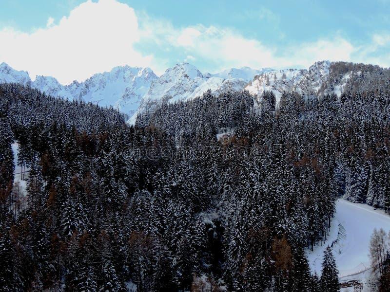De Winter van Pontedi legno In royalty-vrije stock fotografie