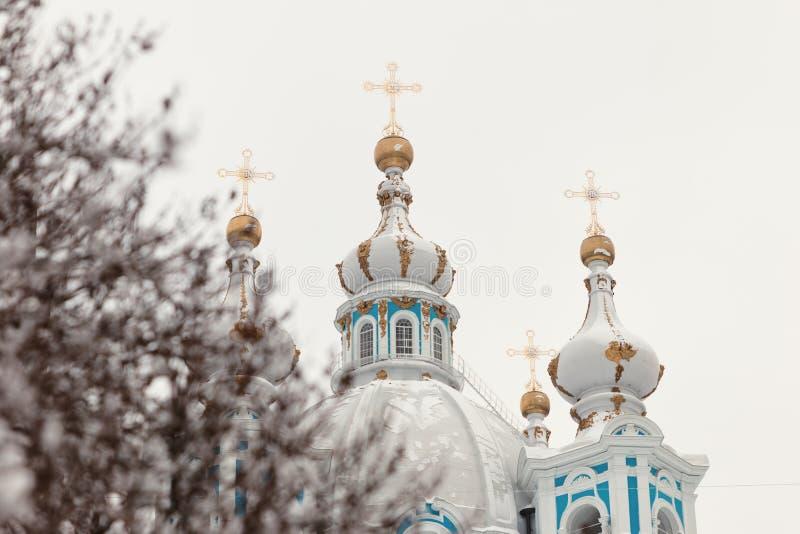 De winter van de Smolnykathedraal royalty-vrije stock foto