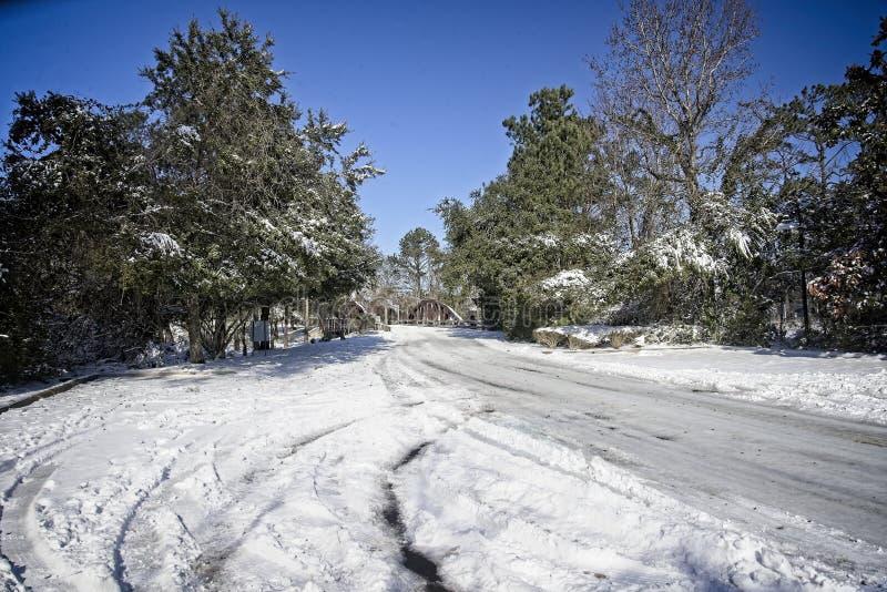 De winter in Virginia Beach stock foto