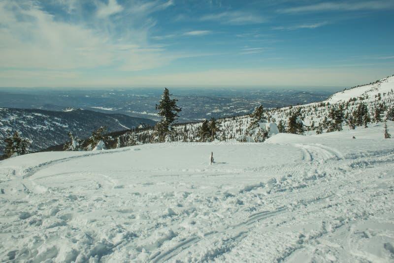 De winter zonnige dag royalty-vrije stock foto's