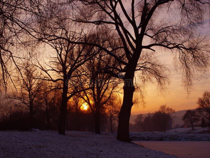 De winteraard royalty-vrije stock afbeelding