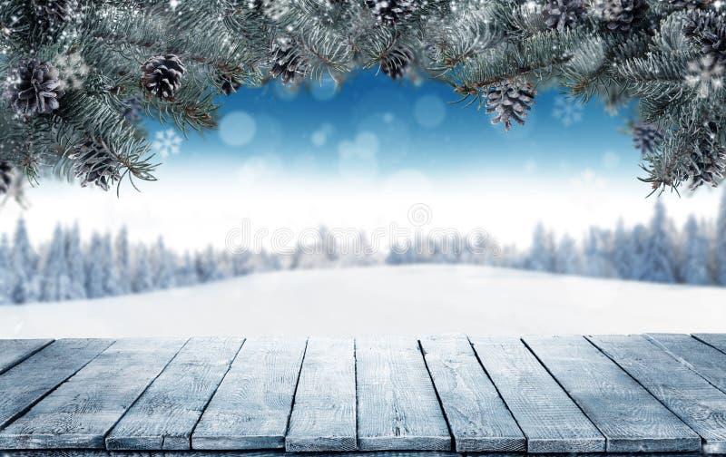 De winterachtergrond met lege houten planken en spartakken royalty-vrije stock foto's