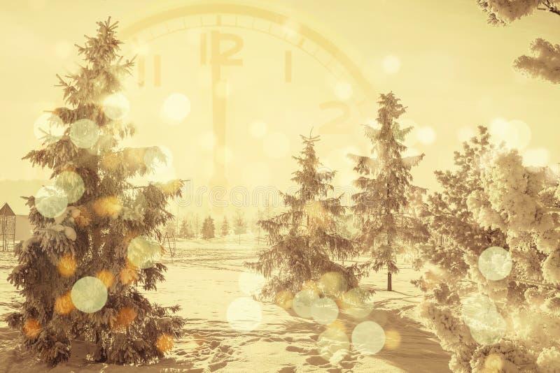 De winterachtergrond van sneeuw en sneeuw behandelde bomen stock foto's