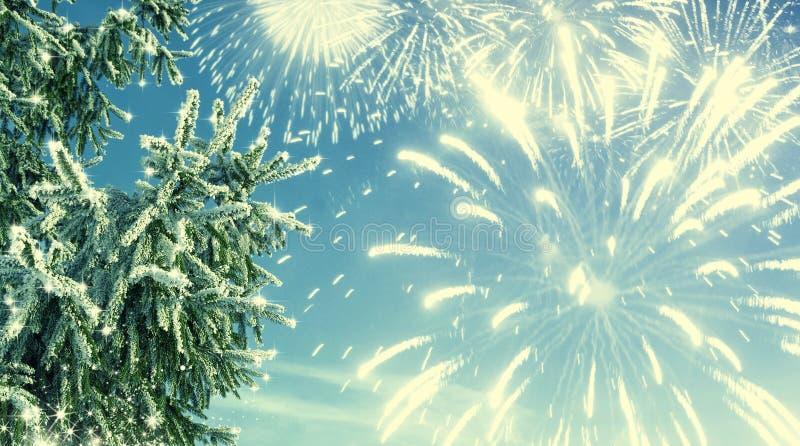 De winterachtergrond van de tak en het vuurwerk van de vorstspar Nieuwe jaarbedelaars royalty-vrije stock fotografie