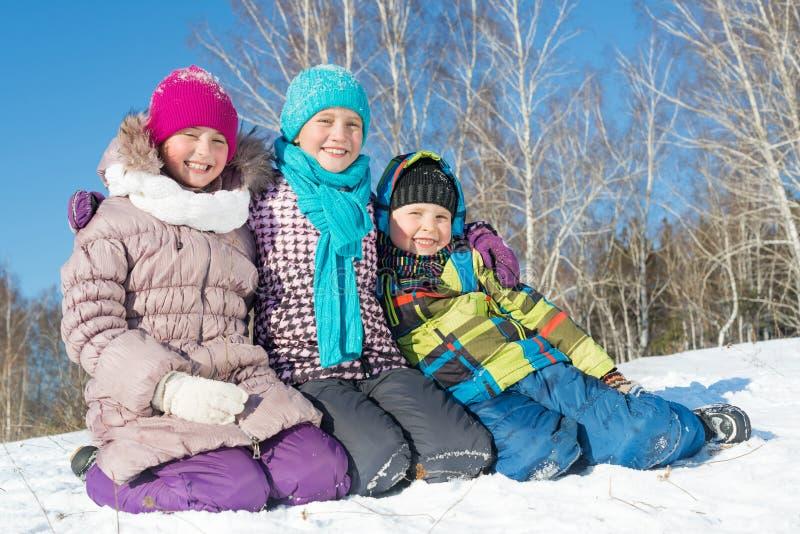 De winteractiviteit stock afbeeldingen