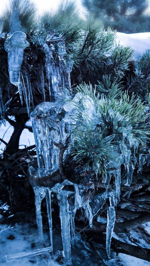 De winterbeeldhouwwerk stock afbeeldingen