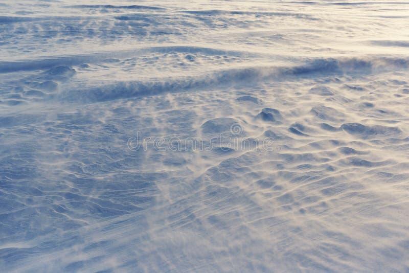 De winterblizzard met sterke blazende wind royalty-vrije stock afbeeldingen