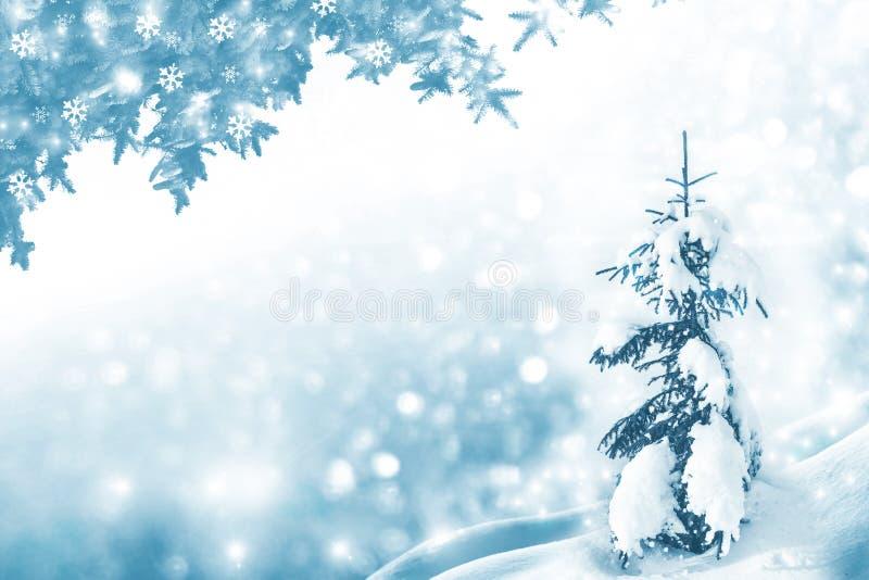 De winterbos met sneeuw behandelde bomen Feestelijke Kerstmisachtergrond royalty-vrije stock afbeeldingen