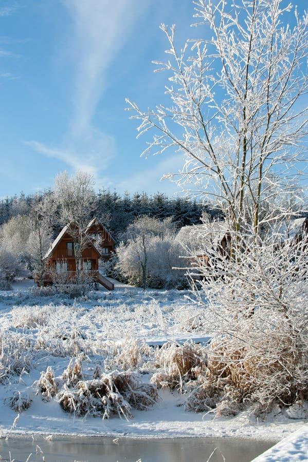 De winterdag in het land royalty-vrije stock foto's