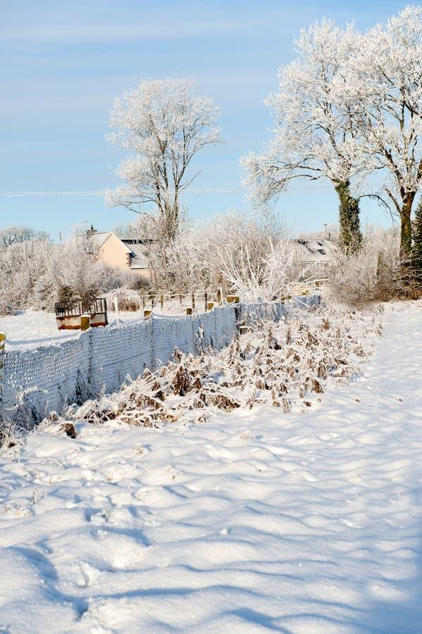 De winterdag in het land stock afbeelding