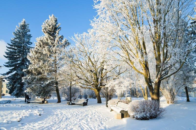 De winterdag van het stadspark. Sillamae, Estland. royalty-vrije stock foto