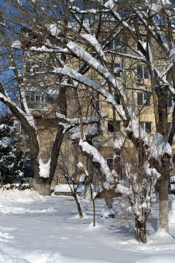 De winterdroom in 2 Maart stock foto