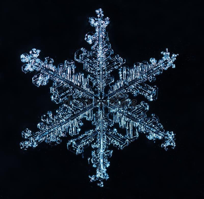 De winterkaart, foto echte sneeuwvlokken stock foto