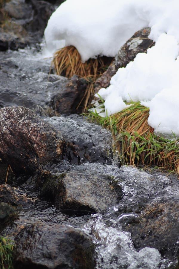 De winterkreek Een kleine bergstroom in de winter close-up royalty-vrije stock fotografie