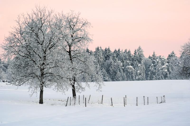 De winterlandschap stock afbeelding