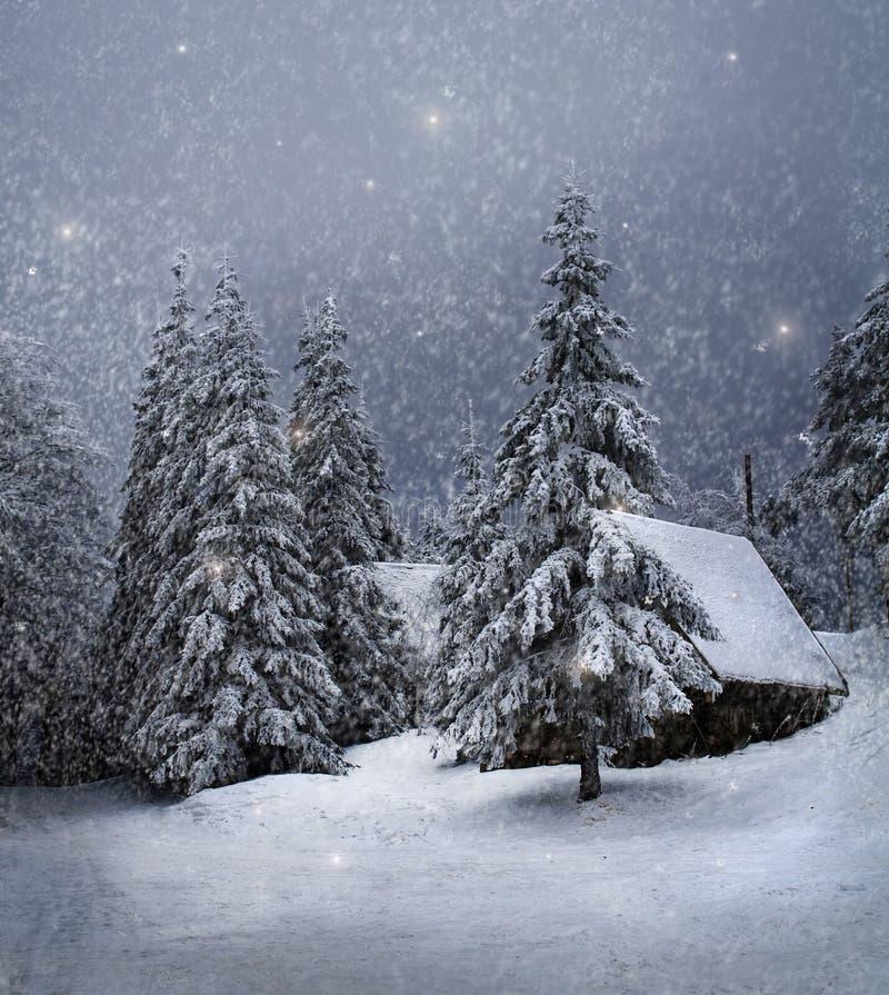 De winterlandschap royalty-vrije stock afbeelding