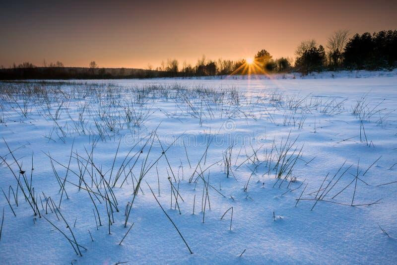 De winterlandschap bij mooie zonnige avond stock foto