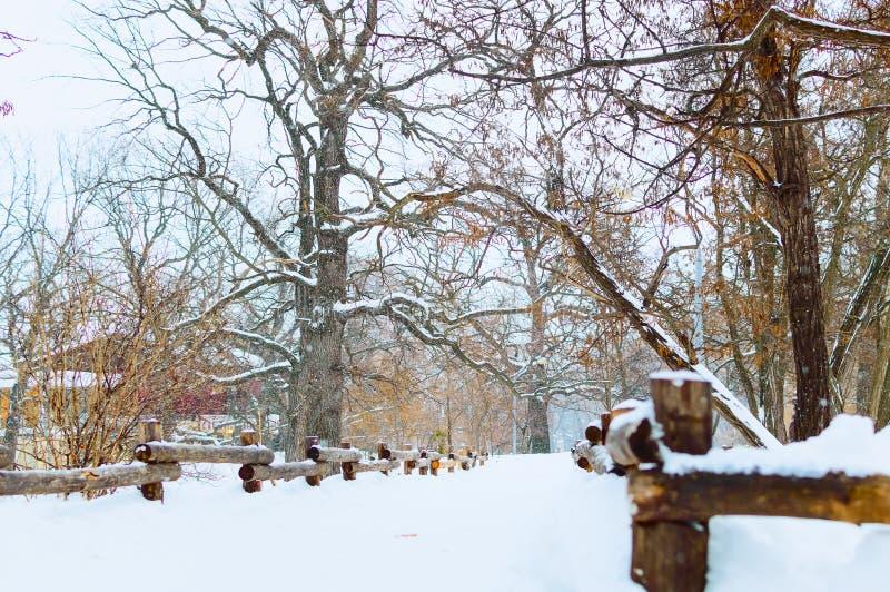 De winterlandschap die een boom, een omheining en een sneeuw afschilderen royalty-vrije stock afbeeldingen