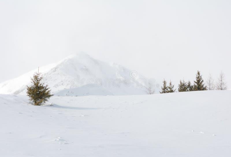 De winterlandschap in een bergvallei met sneeuw stock fotografie