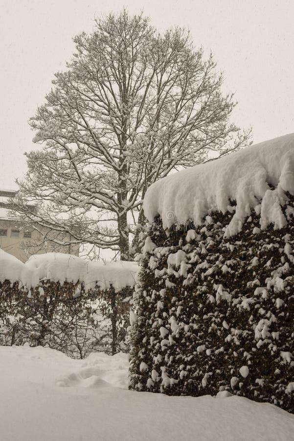 De winterlandschap in Engelberg op Zwitserland royalty-vrije stock fotografie