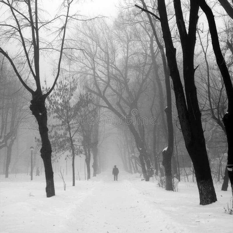 De winterlandschap in het park met mensen die overgaan door stock foto's