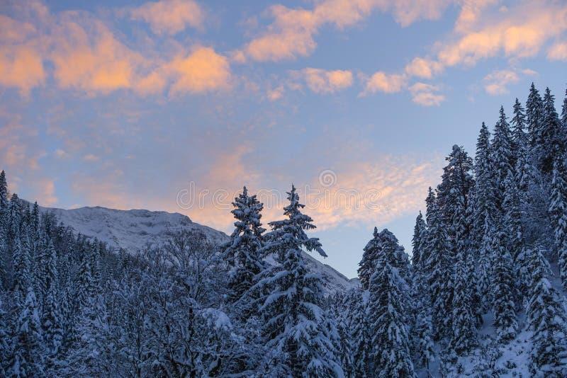 De winterlandschap in Hoger Beieren, Duitsland stock foto