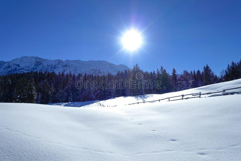 De winterlandschap in Hoger Beieren, Duitsland stock fotografie