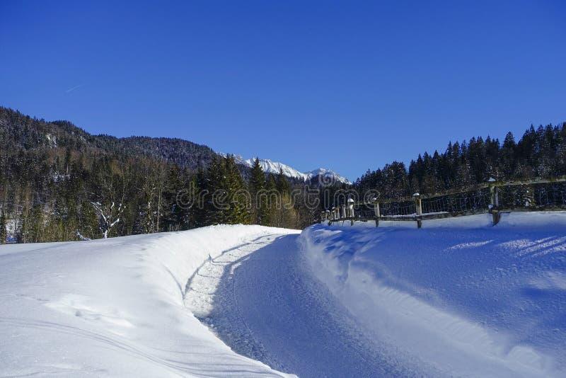De winterlandschap in Hoger Beieren, Duitsland royalty-vrije stock fotografie
