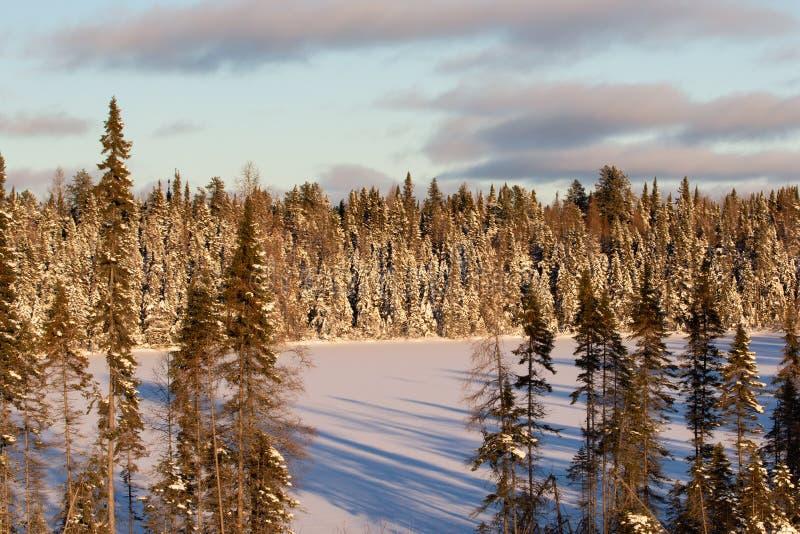 De winterlandschap met Bevroren Meer in Ontario Canada stock afbeelding