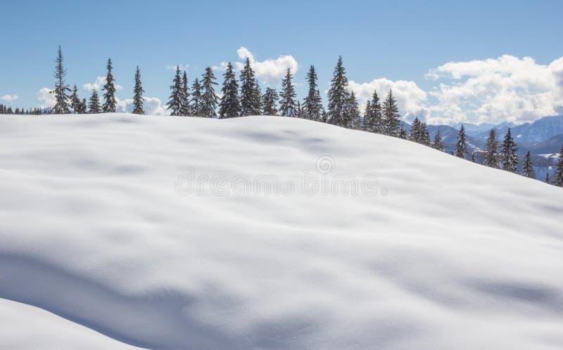 Download De Winterlandschap Met Bomensneeuw En Blauwe Hemel Stock Afbeelding - Afbeelding bestaande uit sneeuw, bergen: 39103557