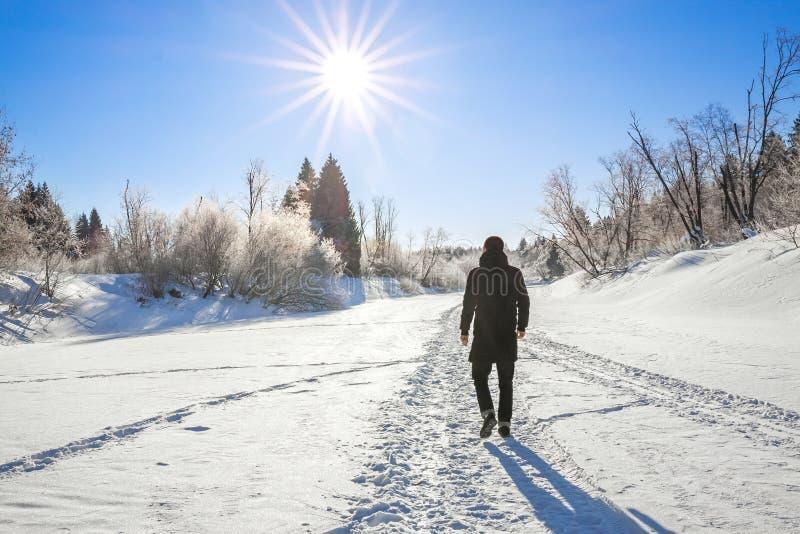De winterlandschap met bos, sneeuw, blauwe hemel en zon royalty-vrije stock foto's