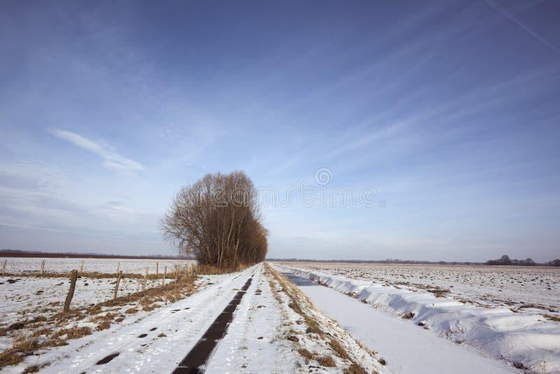 De winterlandschap met het biking van weg in sneeuw royalty-vrije stock foto