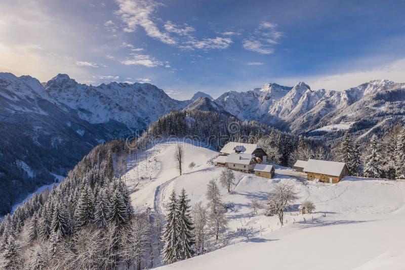 De winterlandschap met landbouwbedrijf, Slovenië stock afbeelding